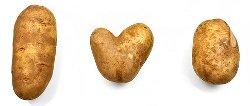 Hvem blev den heldige kartoffel?
