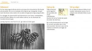 website nyt topbillede